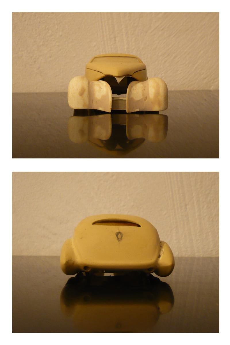 Mes Modeles ratés ! P1020122