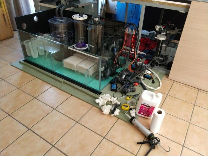 2600 litres récifal mixte , avant qu'il ne soit trop tard . - Page 8 Img_2410
