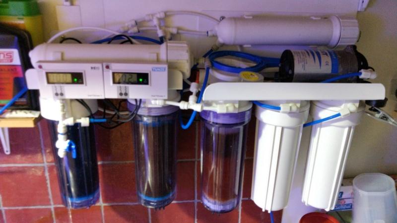 2600 litres récifal mixte , avant qu'il ne soit trop tard . - Page 18 Img_2822