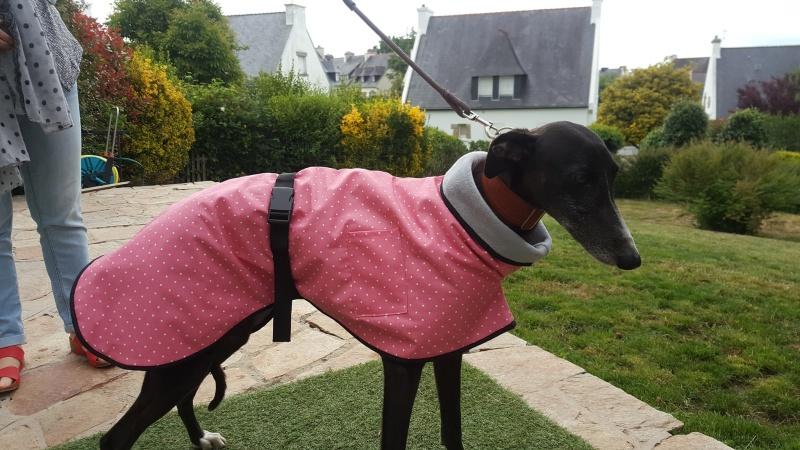 les manteaux de pluie coup vent  13517610