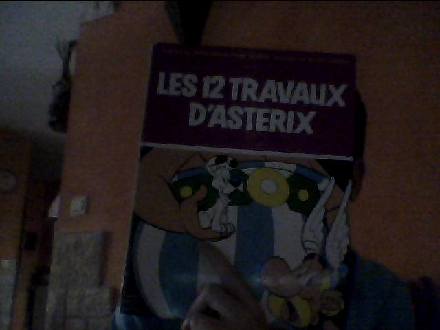 """BD """"Les 12 travaux d'Astérix"""" Photo_10"""