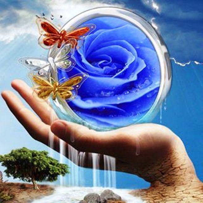 La création exige un Créateur, _1620511