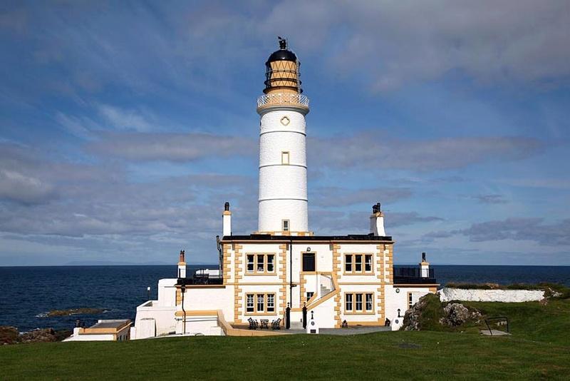 un phare à trouver - ajonc- 8 juillet 2016 trouvé par lily 0110