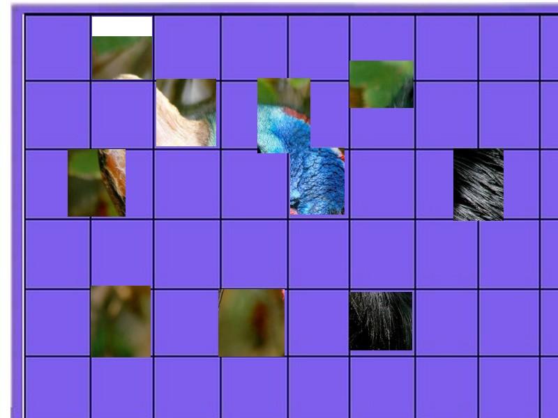 un oiseau -ajonc - 16 juillet  trouvé par René le lillois  Un_ois11