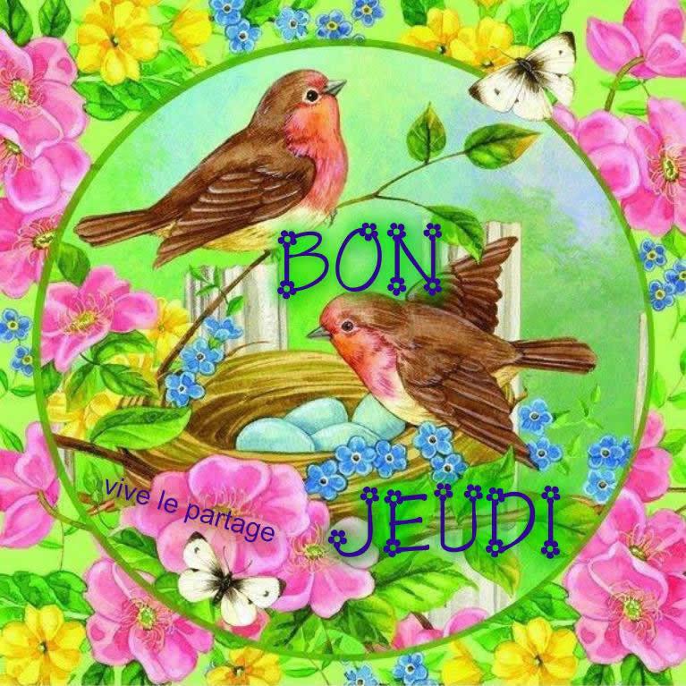 Bonjour du jour et bonsoir du soir - Page 4 Jeudi10