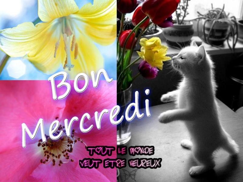 Bonjour du jour et bonsoir du soir - Page 4 Mercre10