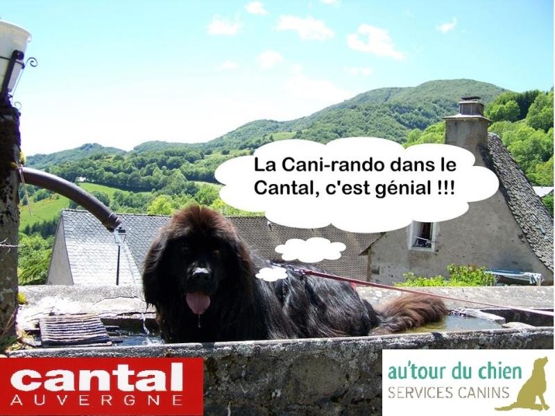 Cani-week-end secteur Aurillac les 19 et 20 avril 2014 10040110
