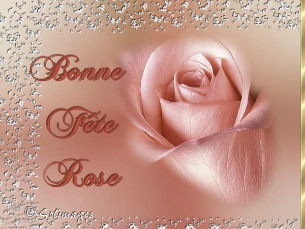fête  à  souhaiter   - Page 5 Rose10