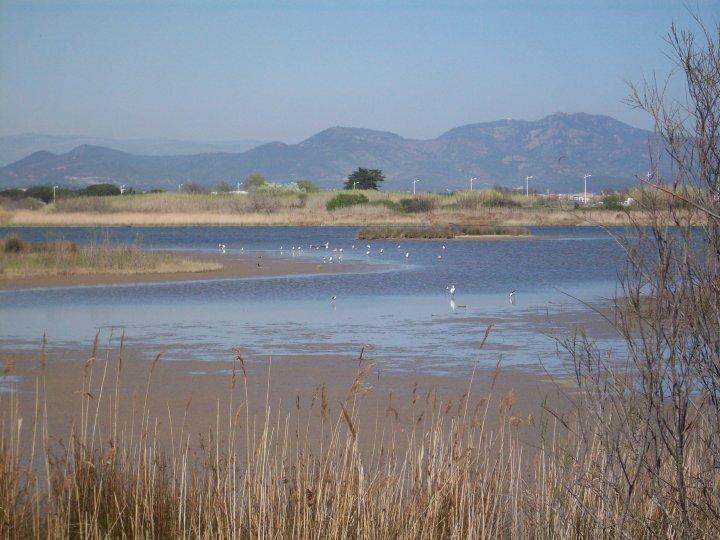 Les étangs de Villepey 26964_10