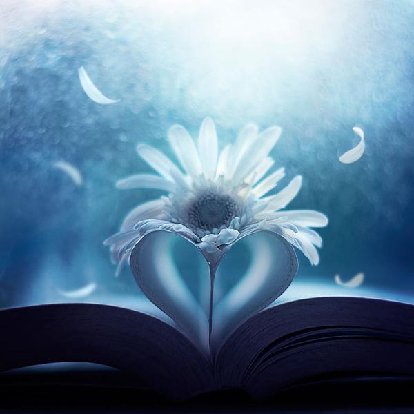 Bộ ảnh vũ điệu loài hoa F10-1410