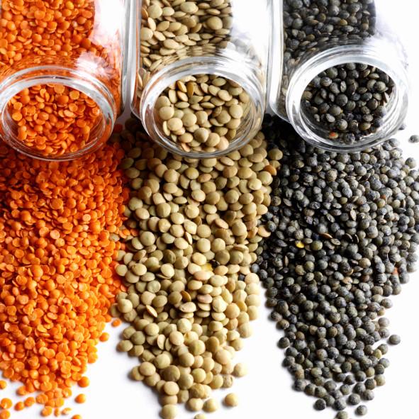 Thực phẩm giàu protein cho người ăn chay Menual10