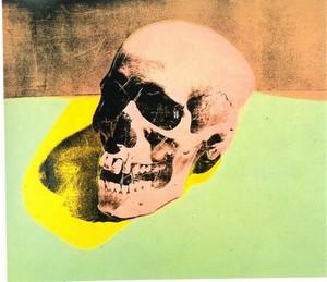 Les VANITES ( Memento mori ) A27-wa10