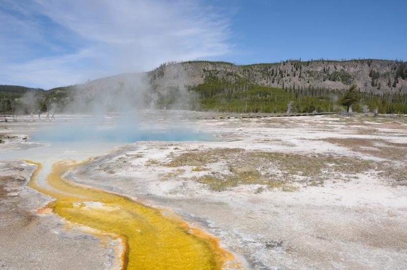 Parc National Yellowstone Dsc_7713