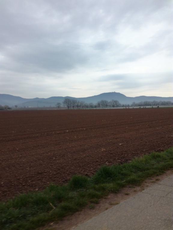 Dimanche 7 Avril - Urschenheim Img_2011