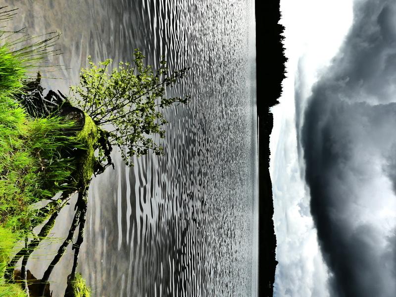 Lac de Devesset P1020210
