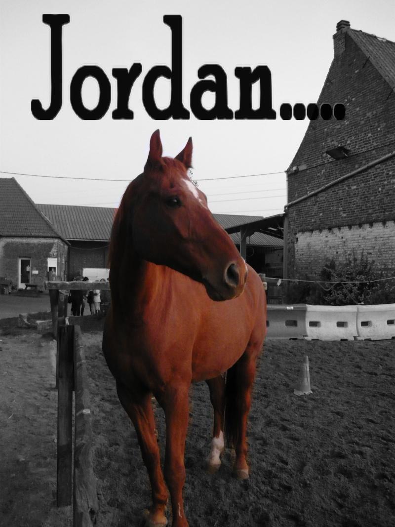 Ma Galerie =) Jordan10