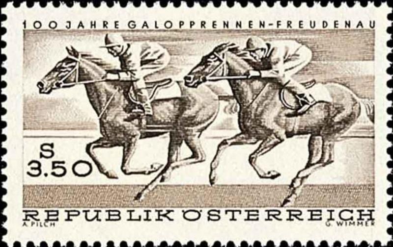 Pferde Freude10