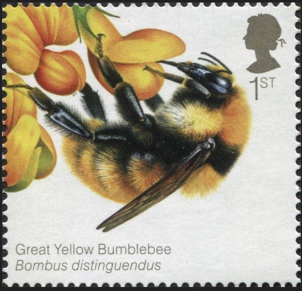 Motiv Bienen und Hummeln - Seite 3 Gb_20128