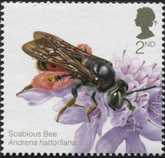 Motiv Bienen und Hummeln - Seite 3 Gb_20129