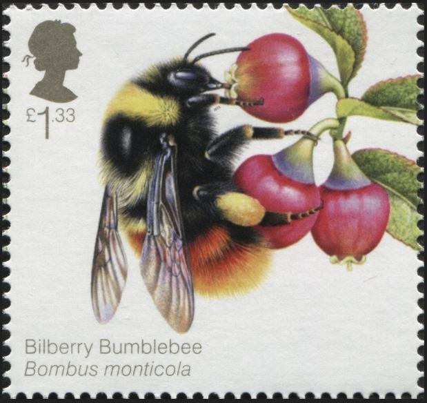 Motiv Bienen und Hummeln - Seite 3 Gb_20131