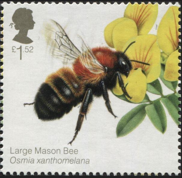 Motiv Bienen und Hummeln - Seite 3 Gb_20132