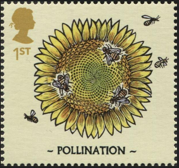 Motiv Bienen und Hummeln - Seite 3 Gb_20135