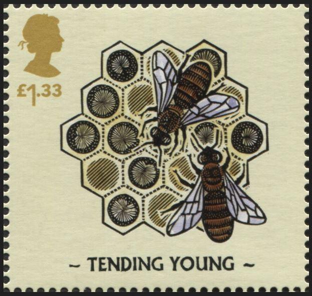Motiv Bienen und Hummeln - Seite 3 Gb_20137