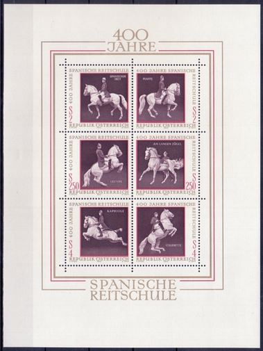 Pferde Hofrei10