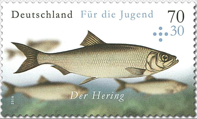 Ausgaben 2016 - Deutschland - Seite 2 Jugend10
