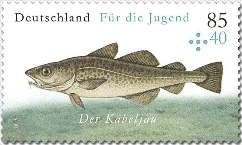 Ausgaben 2016 - Deutschland - Seite 2 Jugend11