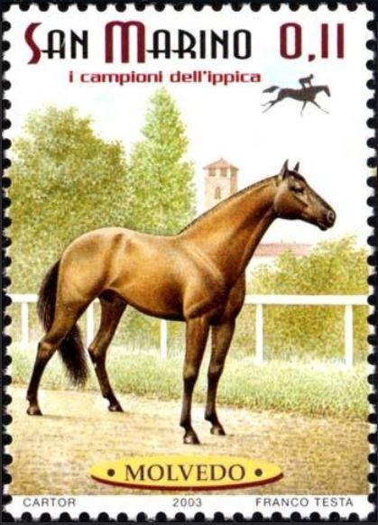 Pferde - Seite 2 San_ma10