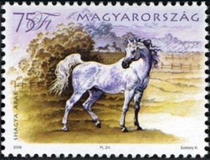 Briefmarken-Kalender 2016   - Seite 8 Shagya10