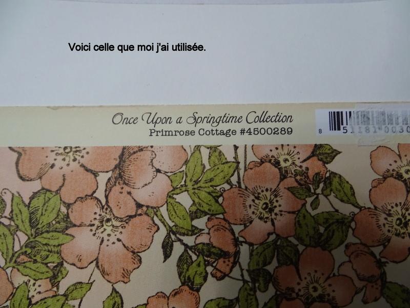Cahier de vacances de scraphappy - Page 6 Dsc01115