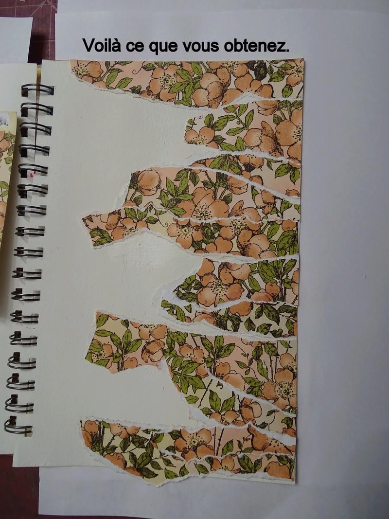 Cahier de vacances de scraphappy - Page 6 Dsc01119