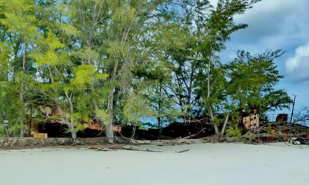 [Campagne] Iles éparses du canal du Mozambique - Page 11 117