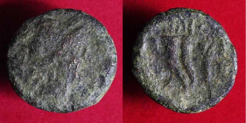 Bronze grec ? ... Bruttium, de Vibo Valentia (plus tard Hipponium) 285d10