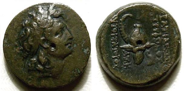 Bronze Séleucide de Tryphon (142-138 av. J.-C.) Trypho10