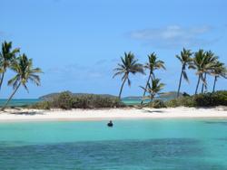 La Maison des Antilles, le partenaire de notre anniversaire ! Photo-11