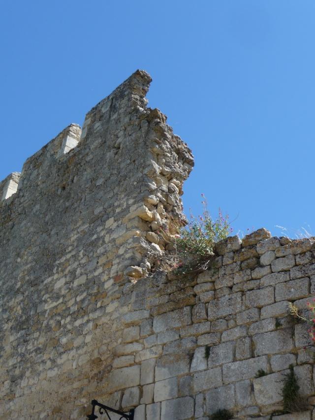 Promenade à Opède-le-vieux. P1100117