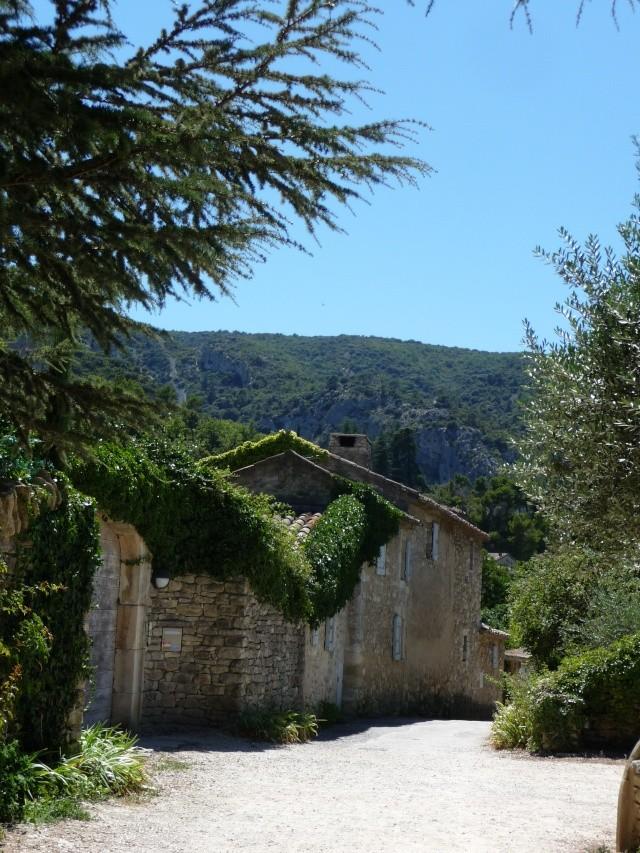 Promenade à Opède-le-vieux. P1100214