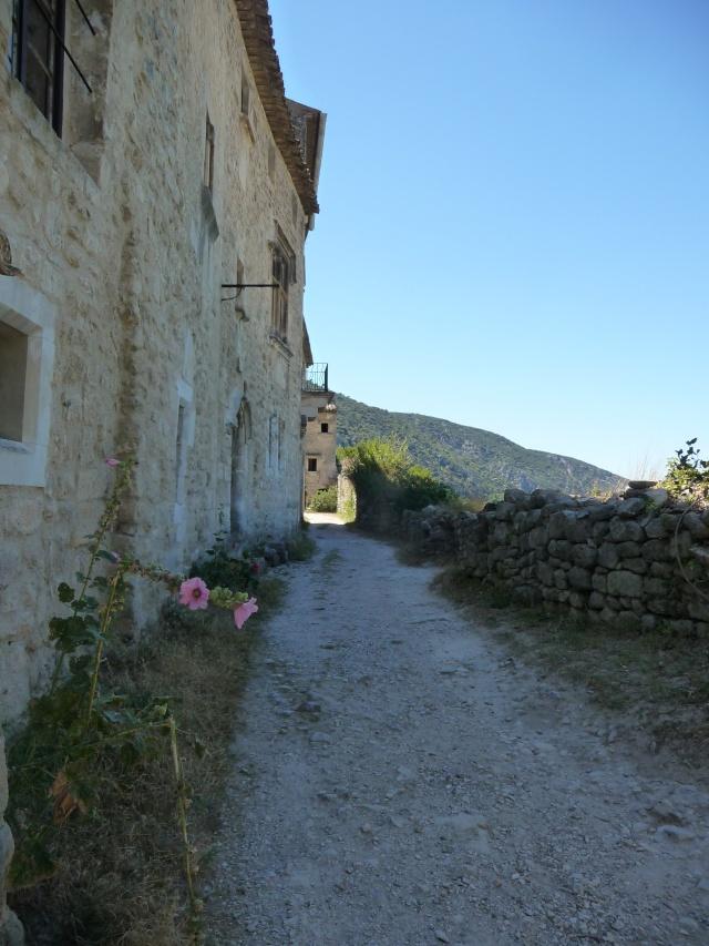 Promenade à Opède-le-vieux. P1100215