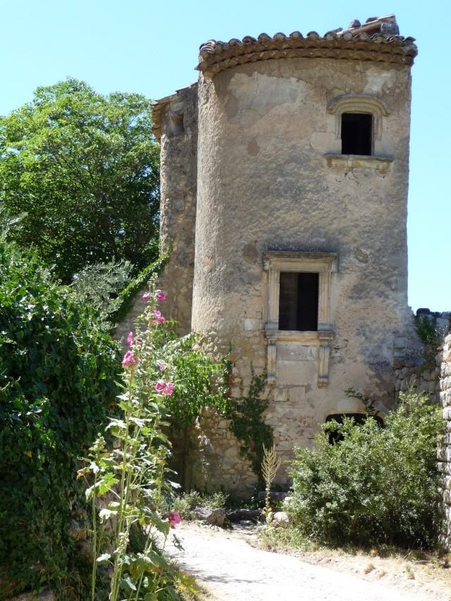 Promenade à Opède-le-vieux. P1100216