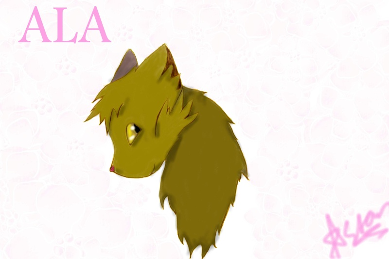 Wolf Drawings and Such Ala11