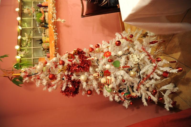 Vos décorations de Noël - Page 2 Dsc_1113