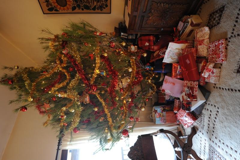 Vos décorations de Noël - Page 2 Dsc_1212