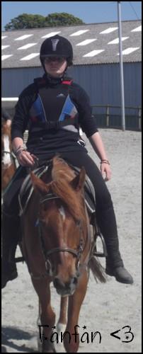 ♣ photos de vous à cheval Fanfan11
