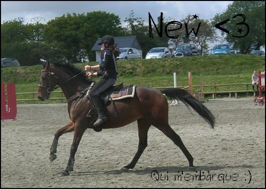♣ photos de vous à cheval New310