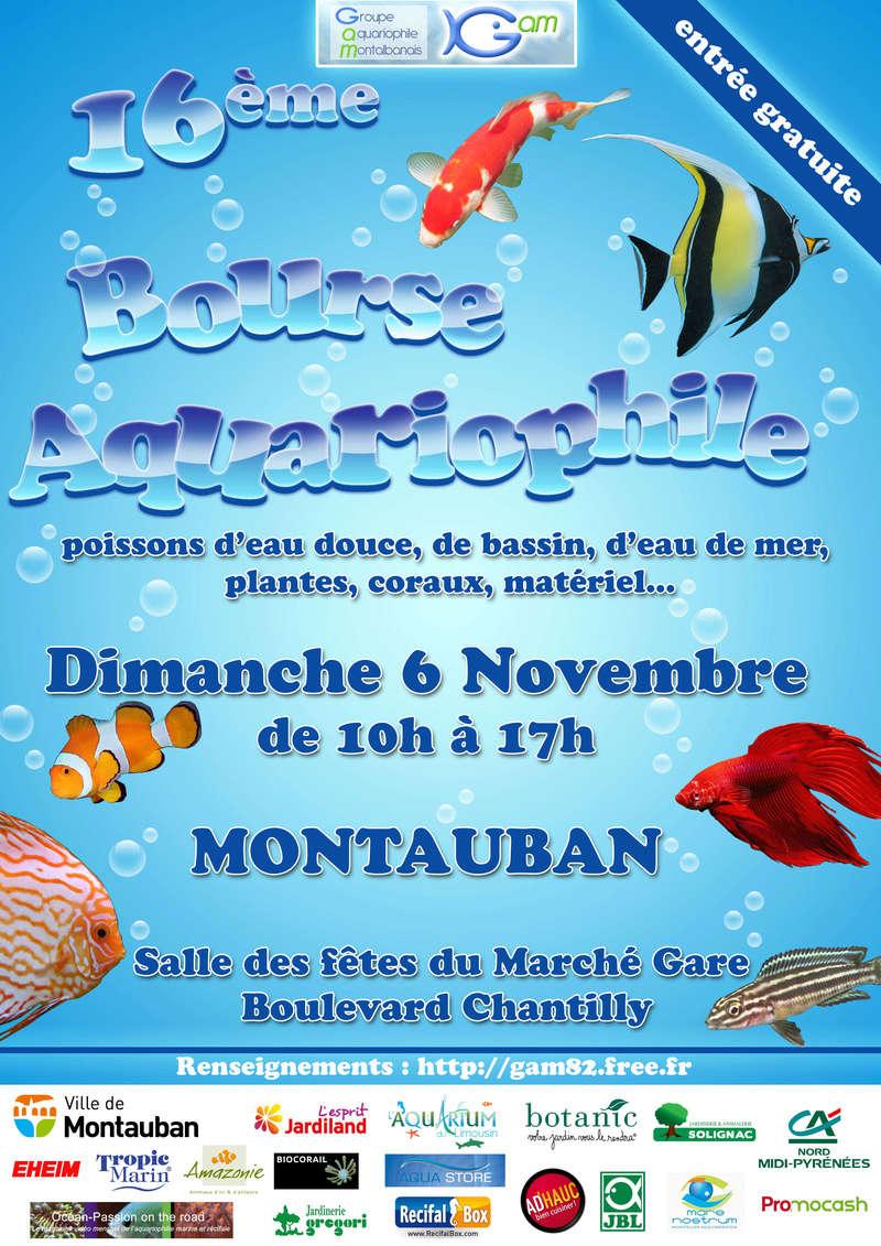 16éme Bourse de Montauban 2016 Bourse10