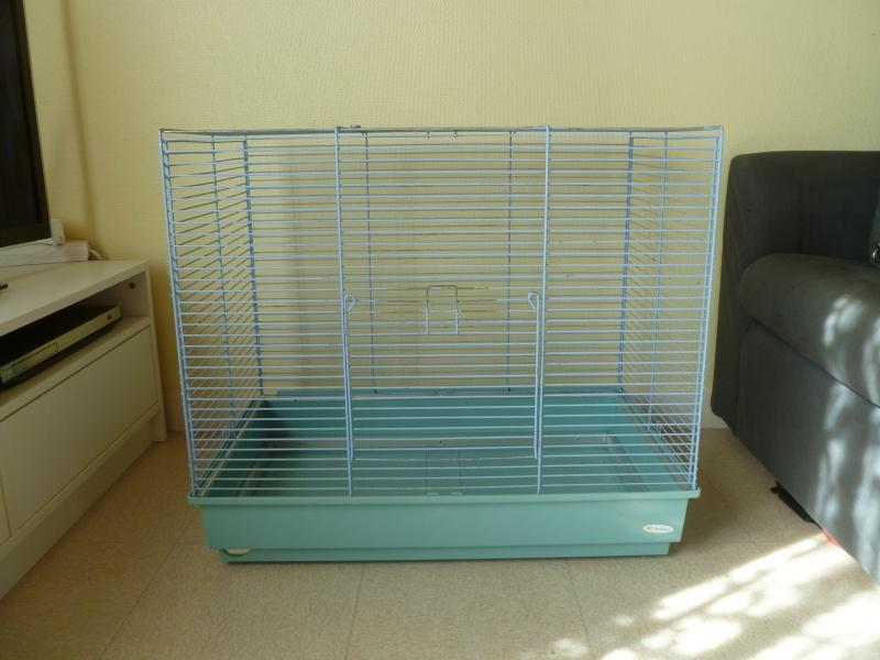 Cage à vendre sur Nantes (44) voire sur Angoulême (16) P1020017