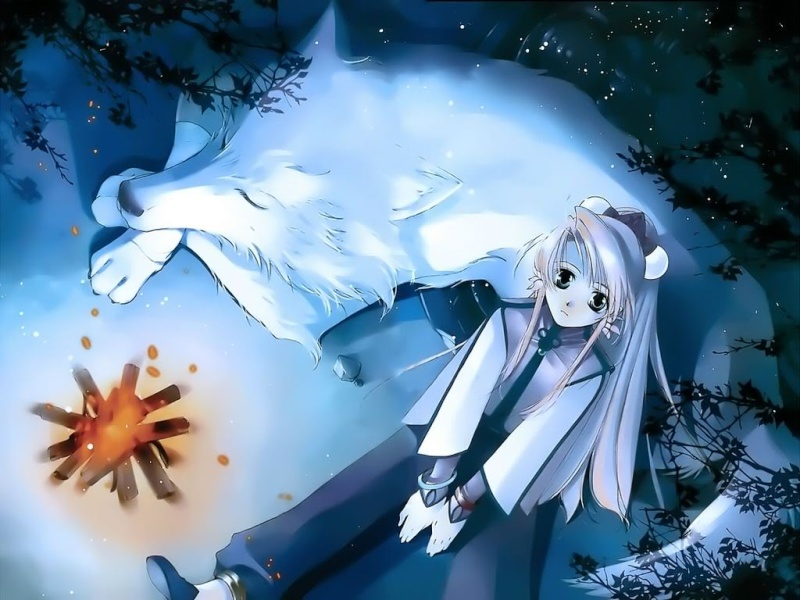 Magical Girl Lyrical Nanoha Recovery 1 Wolf_g10